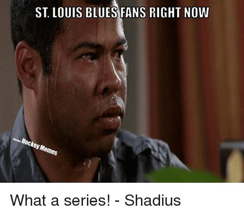St Louis Blues Meme Funny Image Photo Joke 02