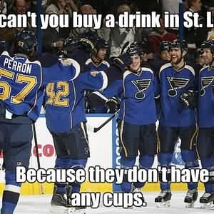 St Louis Blues Meme Funny Image Photo Joke 05