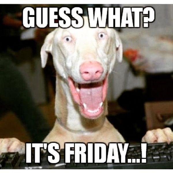Funny Friday Memes: Very Funny Weekend Memes Joke