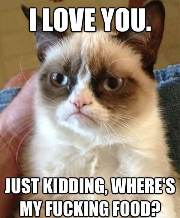 Very funny memes about love joke