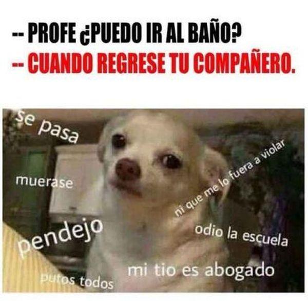 Very funny memes en espanol pictures