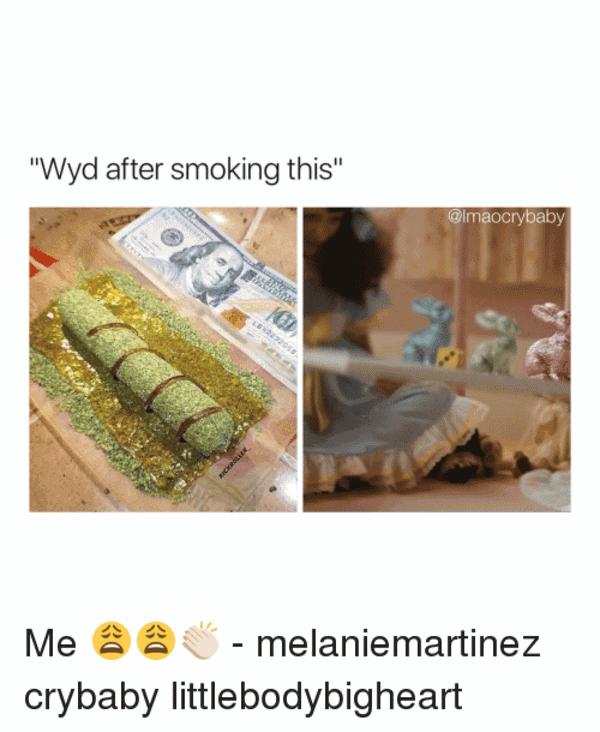 Wyd After Smoking This Meme Photo Joke 10