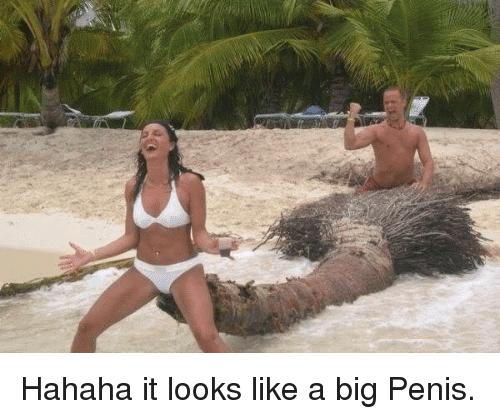 Big Penis Meme Funny Image Photo Joke 05