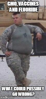 Fat Army Meme Funny Image Photo Joke 04
