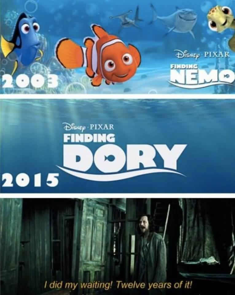 Finding Dory Meme Funny Image Photo Joke 11