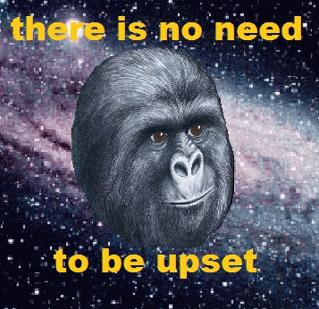 Gorilla Munch Meme Funny Image Photo Joke 03