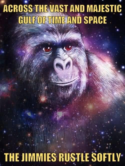 Gorilla Munch Meme Funny Image Photo Joke 04