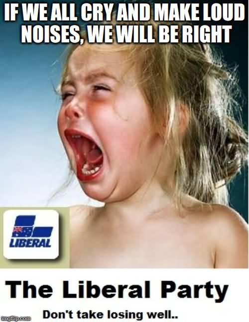 Liberals Crying Meme Funny Image Photo Joke 01