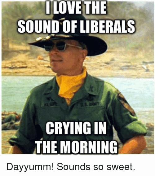Liberals Crying Meme Funny Image Photo Joke 02