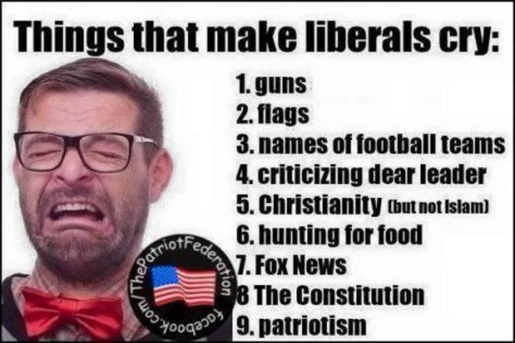 Liberals Crying Meme Funny Image Photo Joke 12