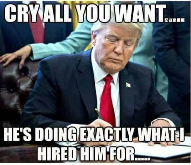 Liberals Crying Meme Funny Image Photo Joke 13