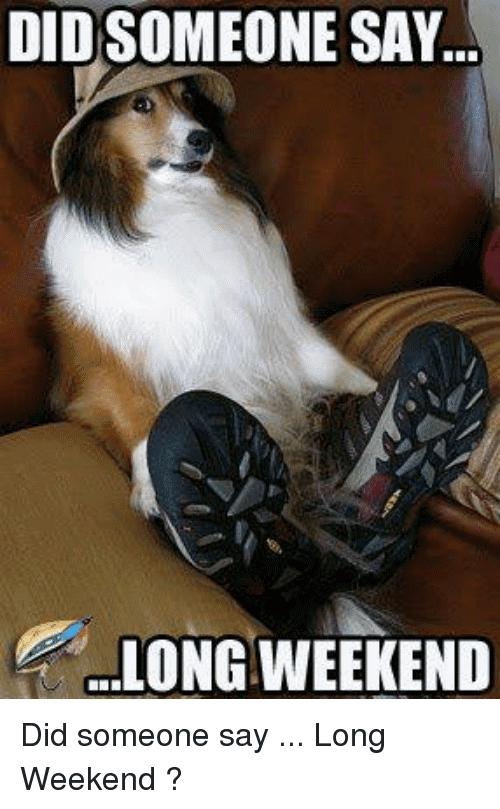 Long Weekend Meme Funny Image Photo Joke 06