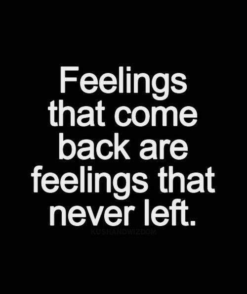 Quotes About Coming Back To The One You Love Meme Image 16 ...