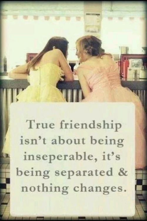 Quotes About Mending Friendships 09
