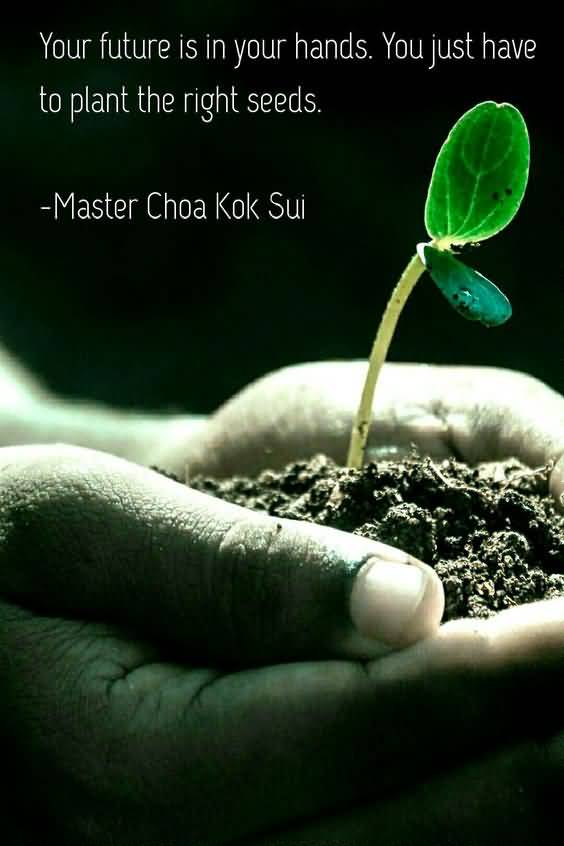 Delightful Quotes About Planting Seeds For Life 06
