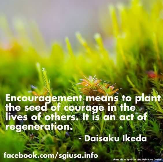 Quotes About Planting Seeds For Life 12