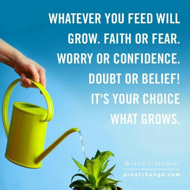 Awesome Quotes About Planting Seeds For Life 14