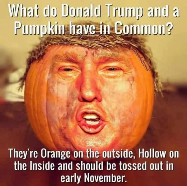 Trump Meme Funny Image Photo Joke 01