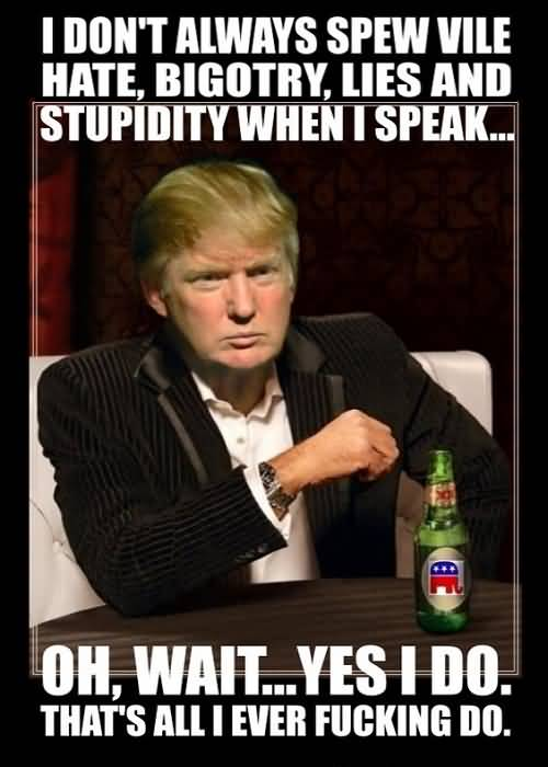 Trump Meme Funny Image Photo Joke 12