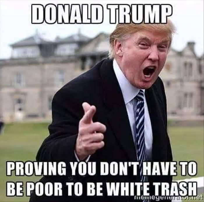 Trump Meme Funny Image Photo Joke 13