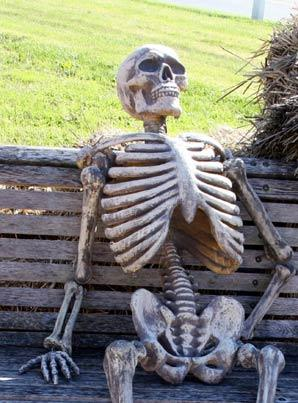 Waiting Skeleton Meme Funny Image Photo Joke 07