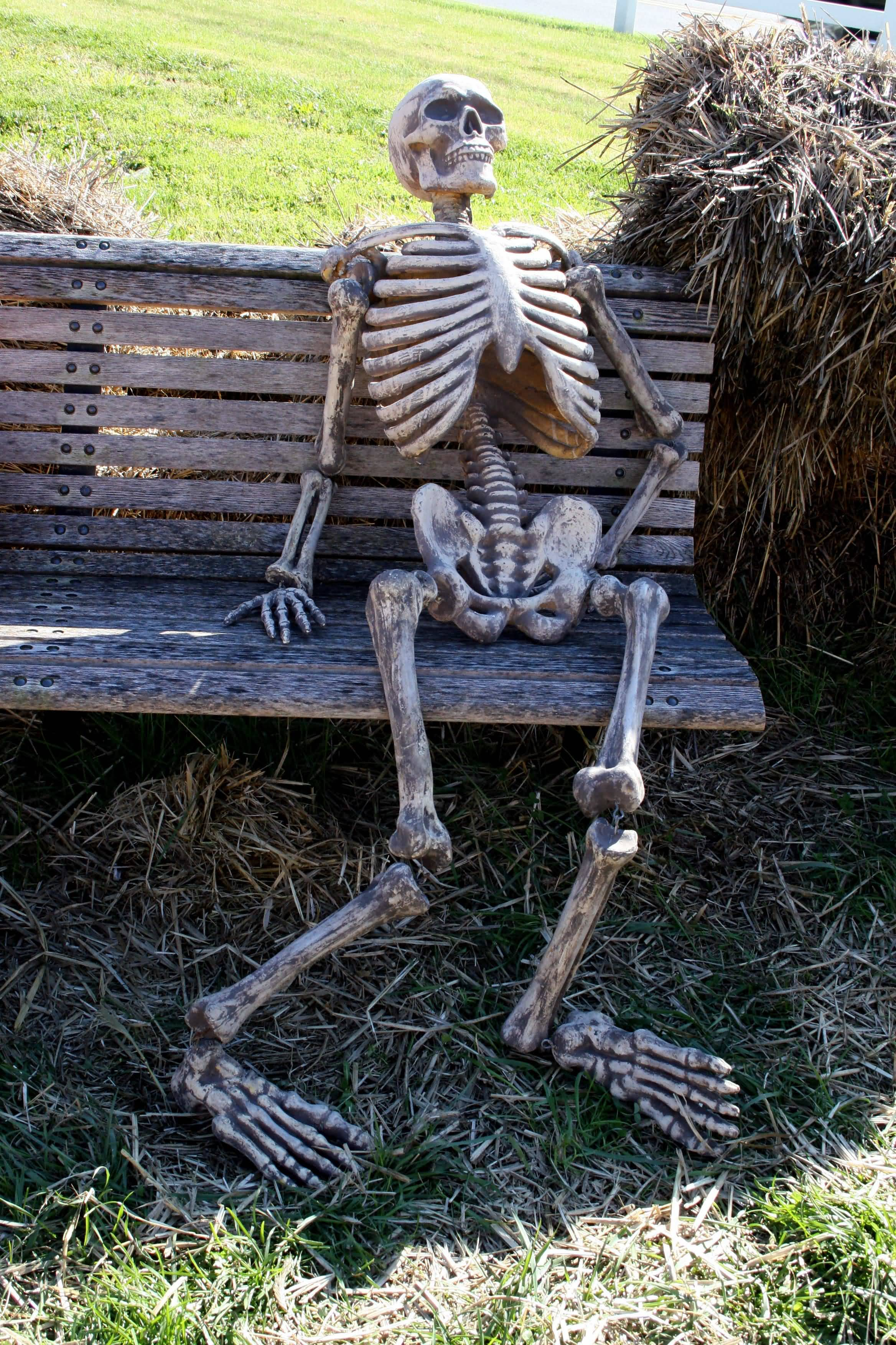 Waiting Skeleton Meme Funny Image Photo Joke 12
