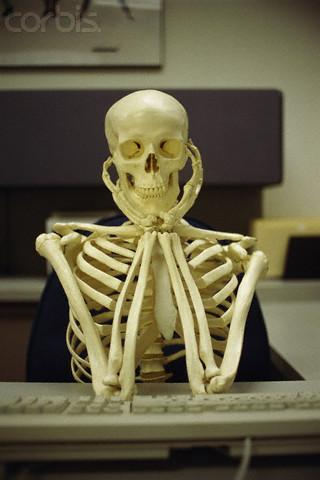 Waiting Skeleton Meme Funny Image Photo Joke 15