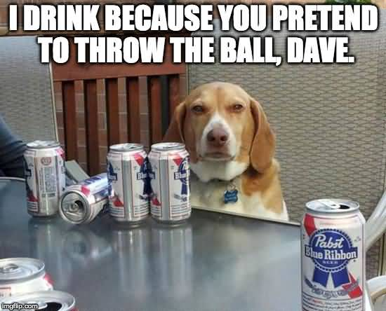 Beer Meme Funny Image Photo Joke 13