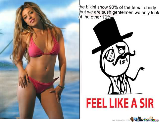 Bikini Memes Funny Image 11