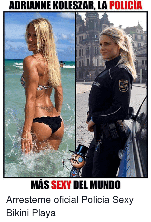 Bikini Memes Funny Image 13