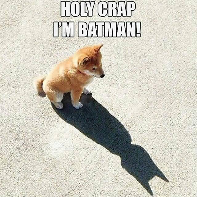I'M Batman Meme Funny Image Photo Joke 01