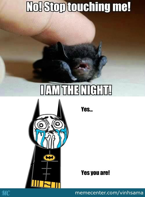 I'M Batman Meme Funny Image Photo Joke 03