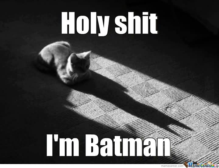 I'M Batman Meme Funny Image Photo Joke 15