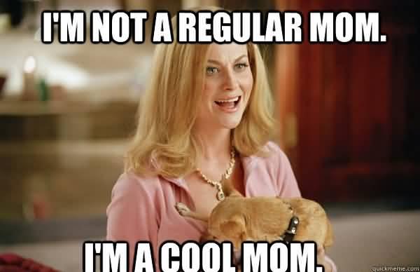 Mom Meme Funny Image Photo Joke 24