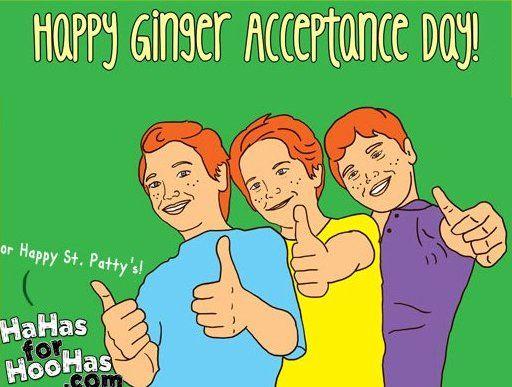 St. Patrick's Day Meme 26
