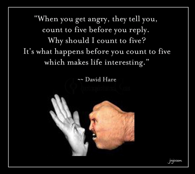 Funny Quotes About Anger And Frustration Image 03