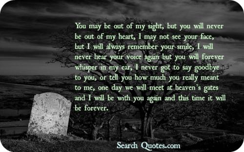 I Will Never Forget You Quotes Death Picture 03