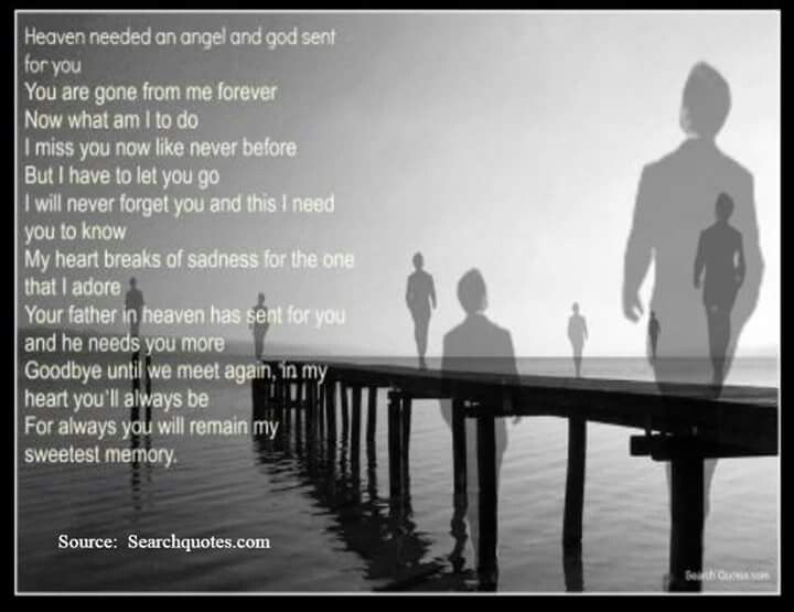 I Will Never Forget You Quotes Death Picture 06