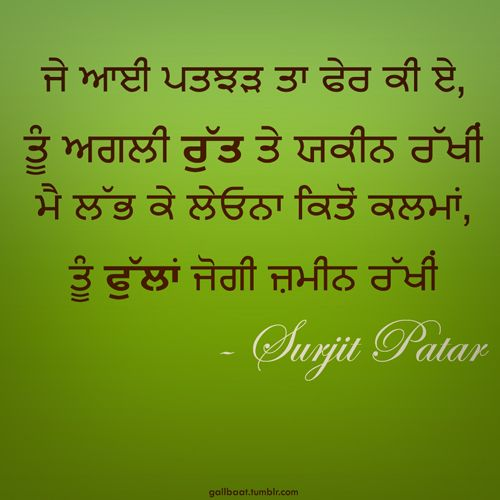 Quotes Written In Punjabi Image 20