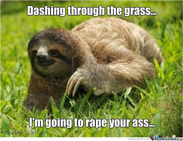 Dashing through the grass i'm going to rape your ass Funny Sloth Rape Memes Images