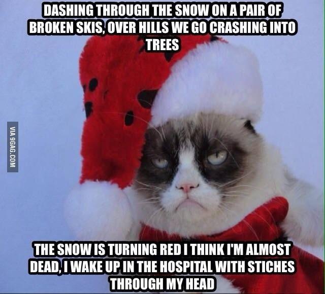 Grumpy Cat Meme Dashing through the snow on a pair of broken skis over hills we go crashing into trees