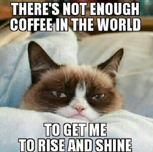 Grumpy Cat Meme Theres Not Enough Coffee In The World To Get Me To Rise And Shine