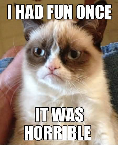 I had fun once it was horrible Grumpy Cat Memes Wallpaper