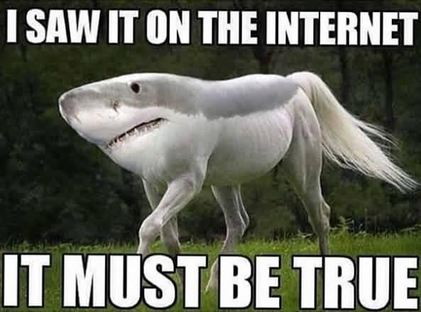 Internet Meme I Saw It On The Internet It Must Be True
