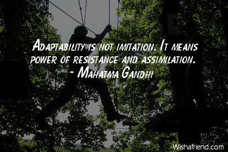 Little Adaptability Quotes