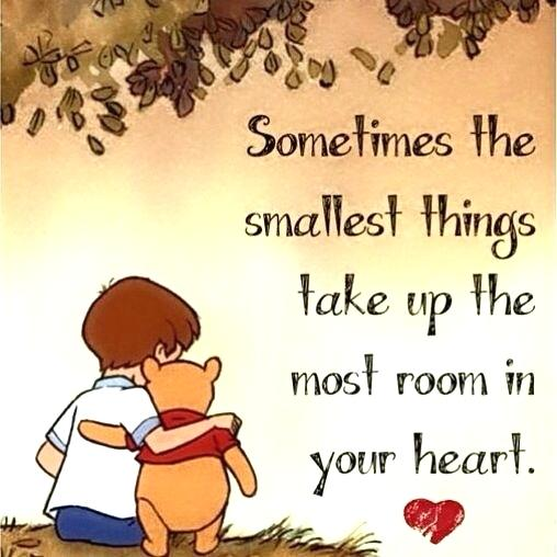 Sometimes The Smallest Things I Love My Nephew Quotes And Sayings