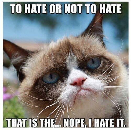 To Hate Or Not To Hate That Is The... Nope I Hate It Grumpy Cat Meme