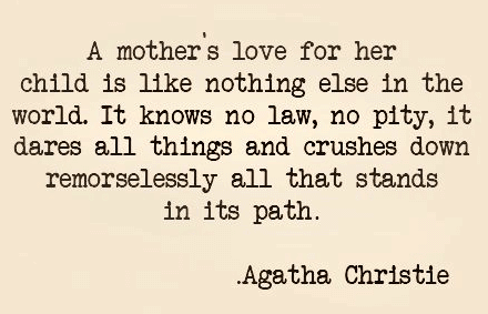 A Mother Love Quotes 14