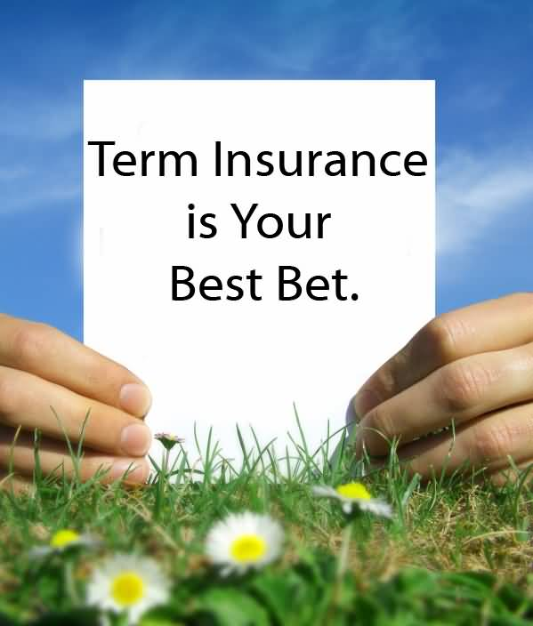 Term Life Insurance Price Quote: 20 Best Term Life Insurance Quote And Sayings