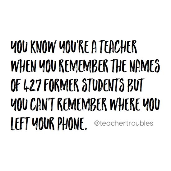 25 Funny Quotes About School Teachers & Photos   QuotesBae